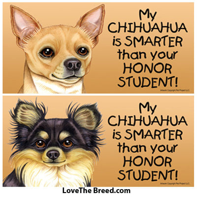 My Chihuahua is Smarter than Your Honor Student