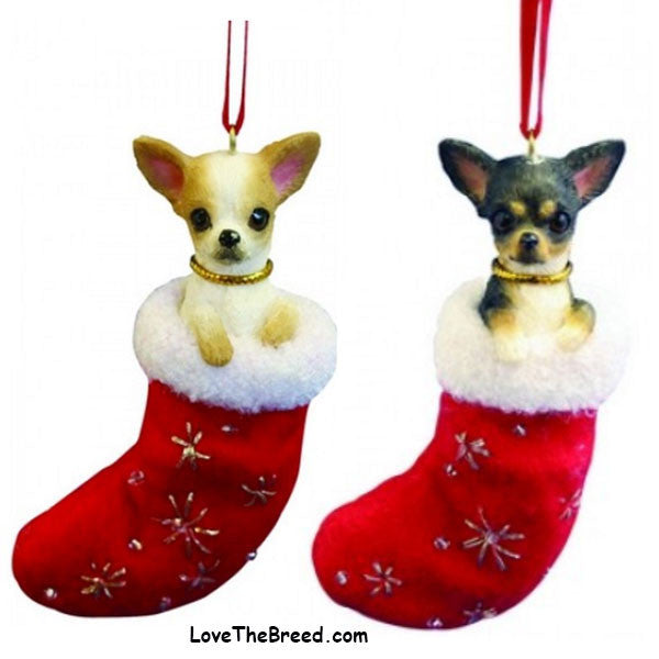 Chihuahua Holiday Ornament in Stocking