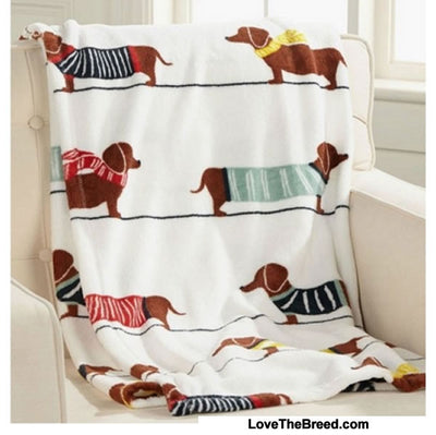Plush Blanket Dachshunds in Sweaters