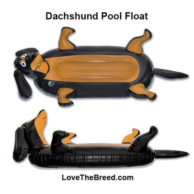 Dachshund Pool Float PRE-ORDER
