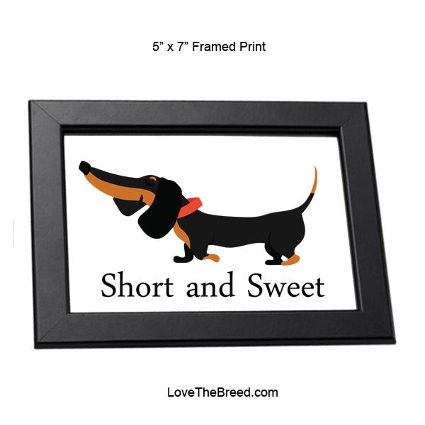 Dachshund Short and Sweet Black and Tan Framed Print 5 x 7
