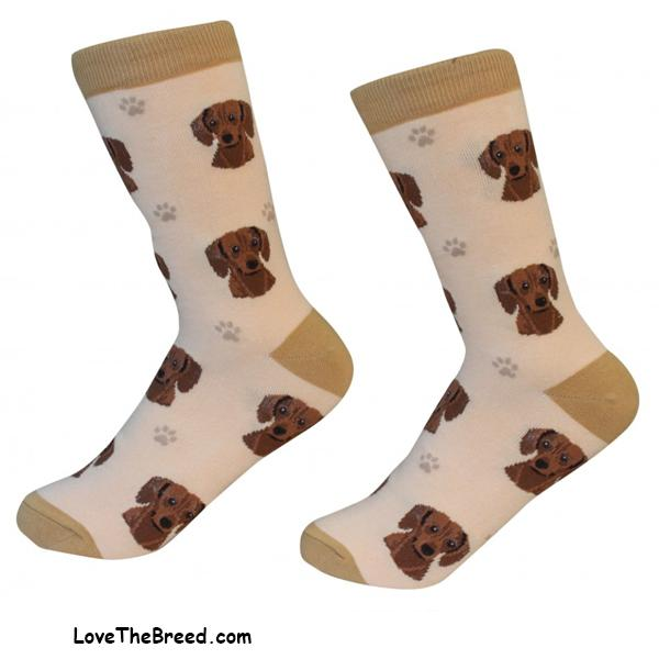 Dachshund Brown Short Hair Socks