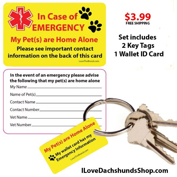 Emergency Pet Care Key Tag and ID Card Set - 1 set