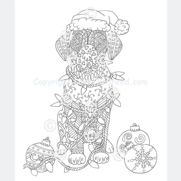 Labrador Retriever Coloring Book For Adults And Children