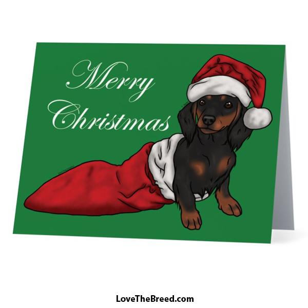 Merry Christmas Dachshund Black and Tan Card - with Envelope