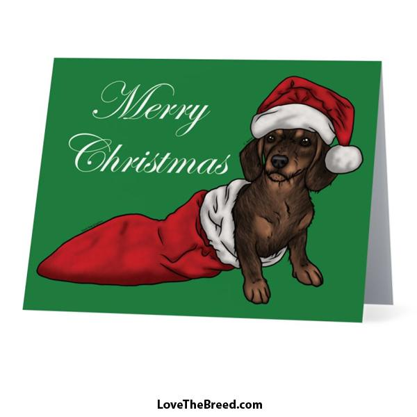 Merry Christmas Dachshund Wire Hair Card - with Envelope
