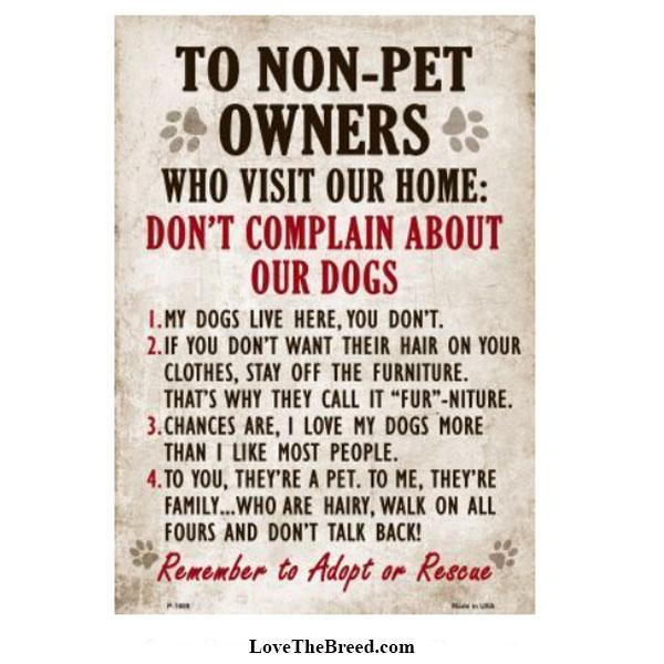 Non Pet Owner Rules DOGS Sign