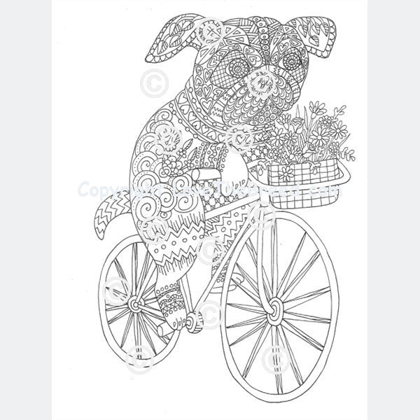 pug coloring book for adults and children volume 1 - Bicycle Coloring Book