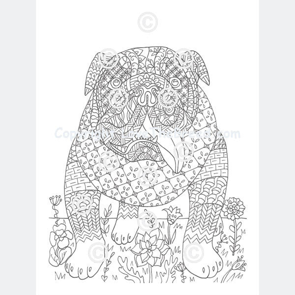 Bulldog Coloring Book For Adults And Children - Volume 1 - LoveTheBreed.com