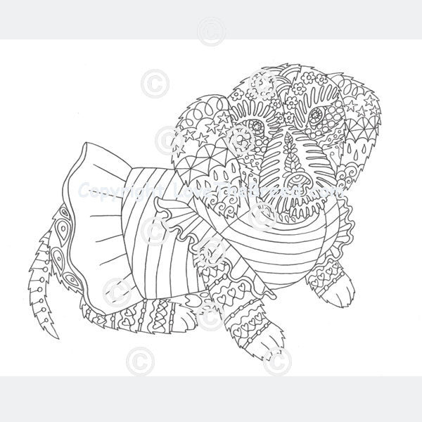 dachshund coloring book for adults and children