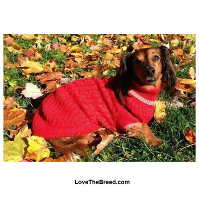 Dog Sweater Classic Cable Knit Red