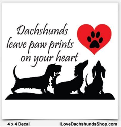 Dachshunds Leave Paw Prints on Your Heart Decal