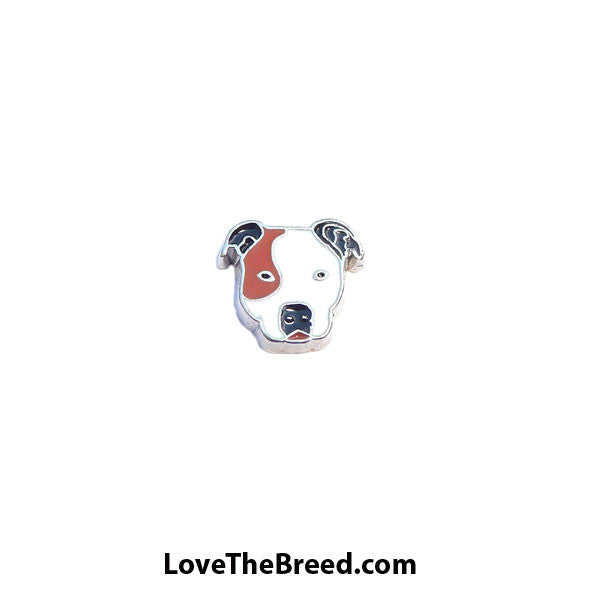 Pit Bull Floating Charm