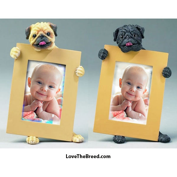 Pug Photo Frame - Black and Brown Fawn Pug Picture Frame