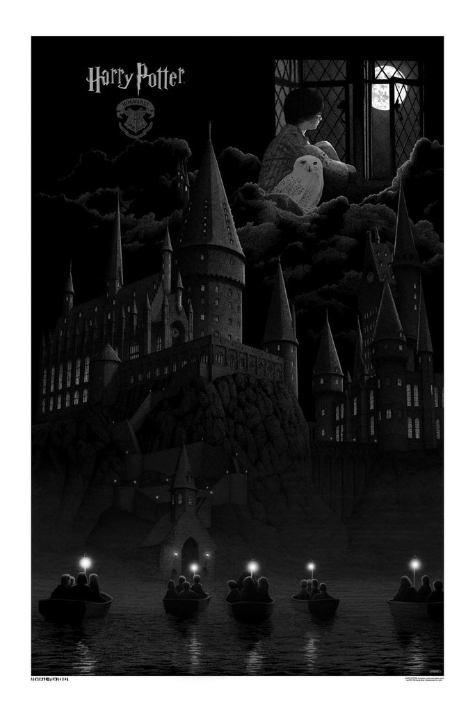 """Harry Potter and the Sorcerer's Stone"" - Variant Grey Edition"