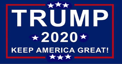 Trump 2020 Vinyl Decal