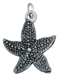 lizzy james silver starfish charm