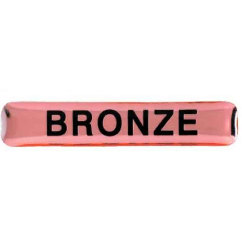 #E98 Bronze Enamel Bar Badges - pack of 5