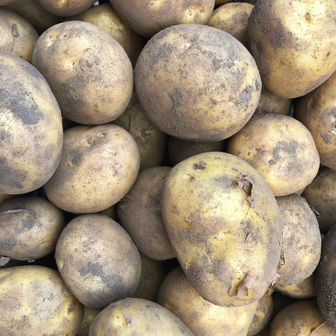 Balgove Grown Markies Potatoes