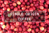 Single Origin Subscriptions