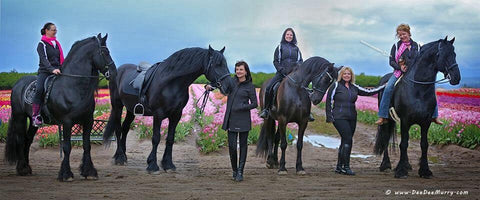 The BlackPearl Friesian and Cheval Amour