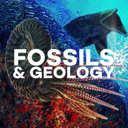 Fossils & Geology