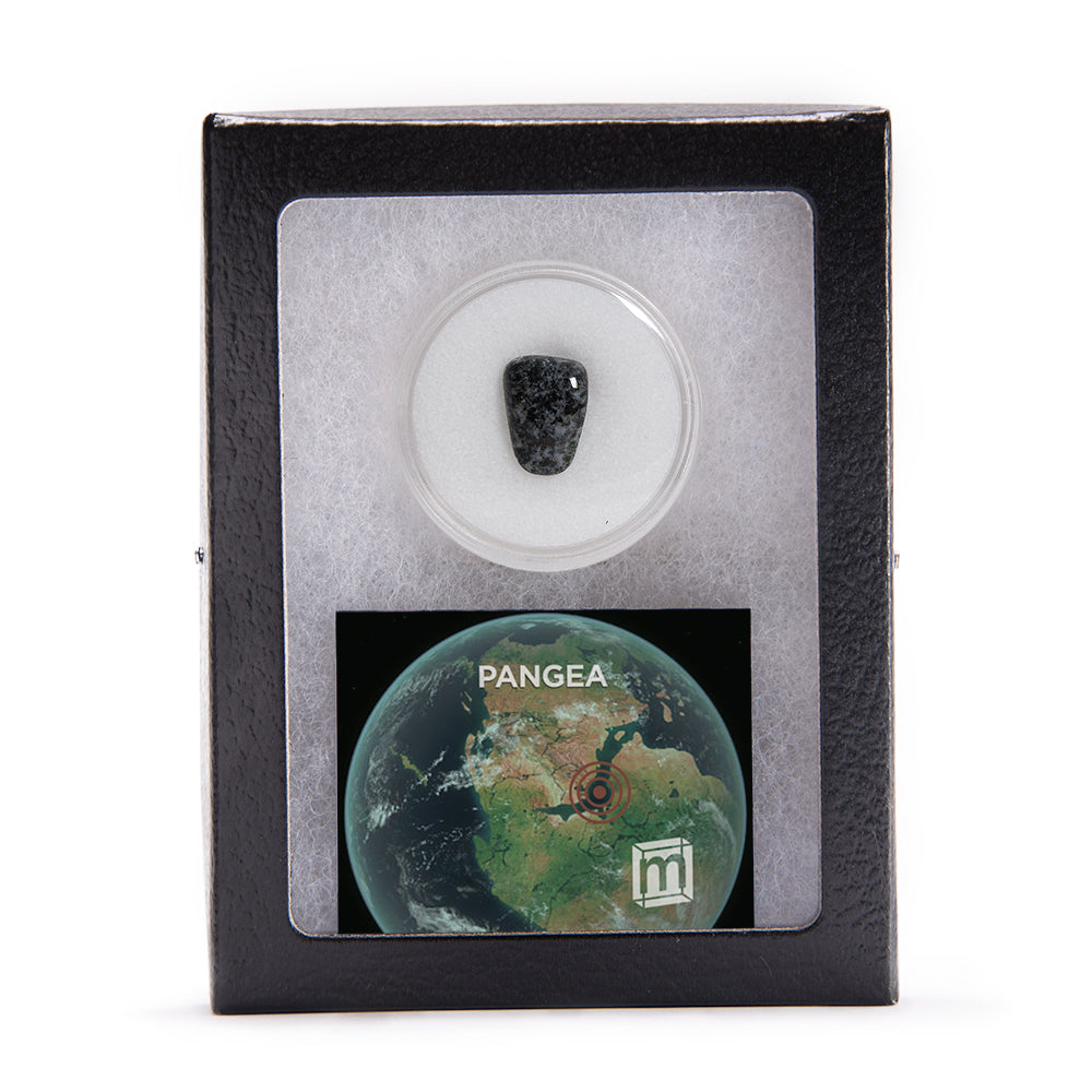 Pangea Polished Fragment (LARGE)