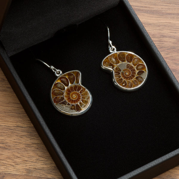 Ammonite Jewelry - Pendant Necklace and Earrings