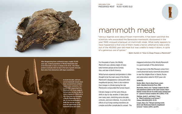 Companion Guide - Mammoth Meat Specimen