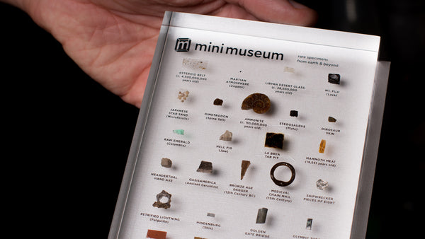 Companion Guide Backing the Second Edition Mini Museum