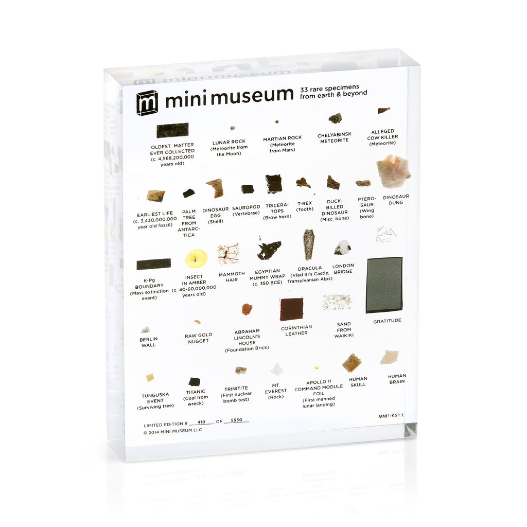 Mini Museum - First Edition (LARGE - 33 Specimens)