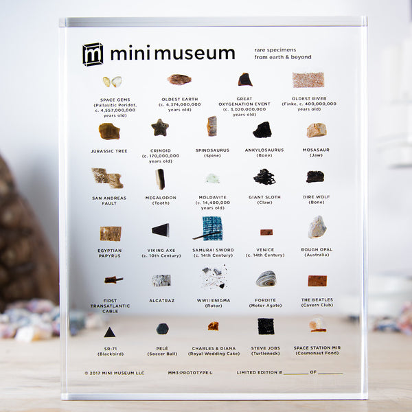 Mini Museum - Third Edition (LARGE - 29 Specimens)
