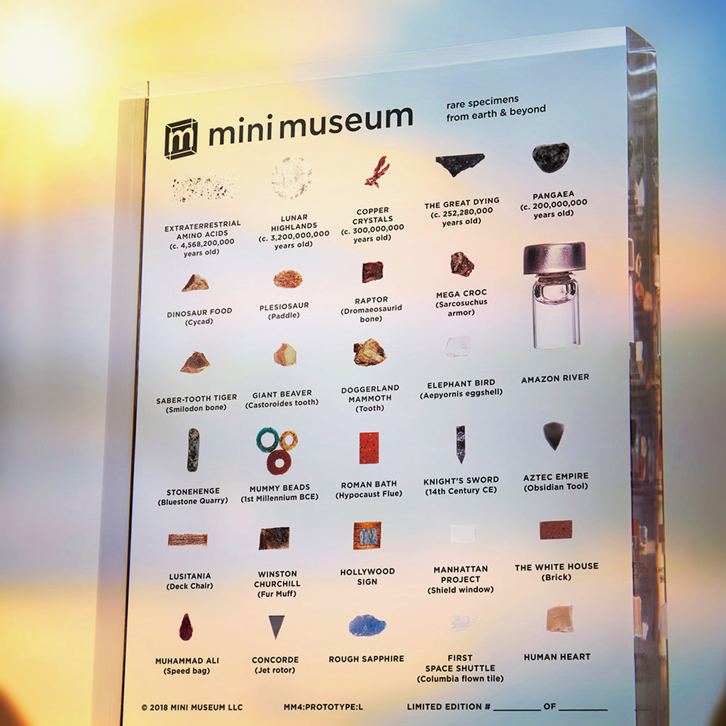 Mini Museum - Fourth Edition (LARGE - 29 Specimens)
