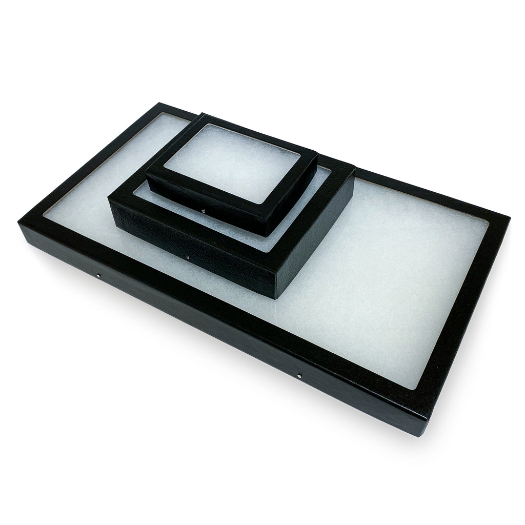 Classic Riker Mount Display Case - Black with Glass Top