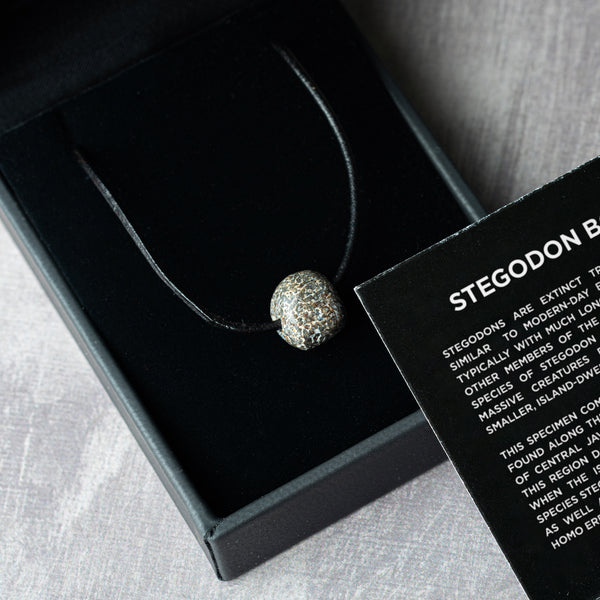 Stegodon Bone Necklace