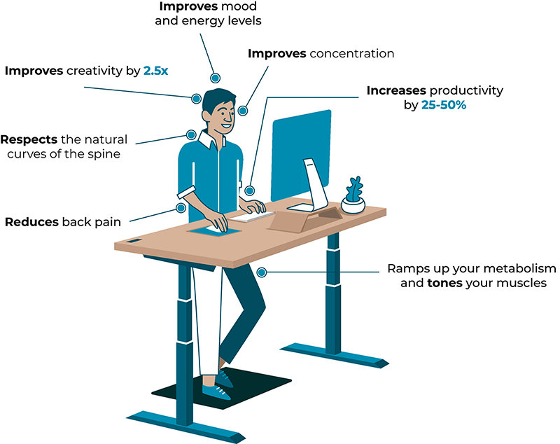 standing desks sit stand height adjustable furniture benefits the body