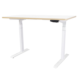 TEKDESK electric standing desk height adjustable sit stand desk south africa white