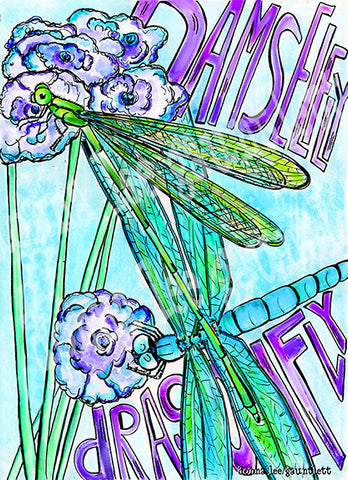Dragonfly & Damselfly Delight