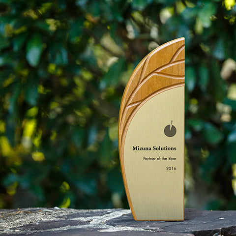 Shelter Award eco friendly trophy from Rivanna Natural Designs