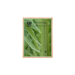 Bamboo Mini Plaque Green l Green Awards and plaques