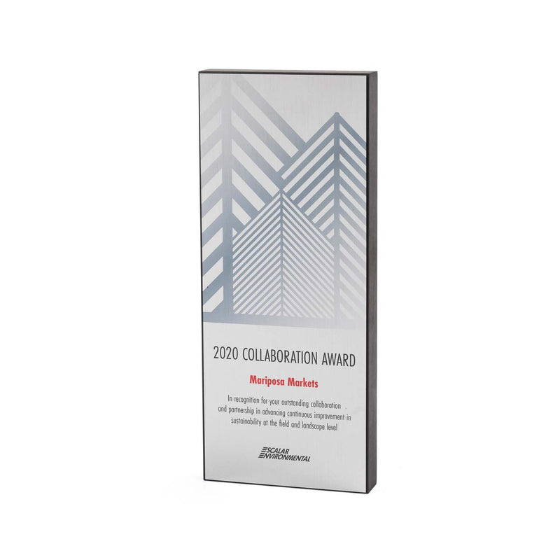 Pine Silver Recycled Award