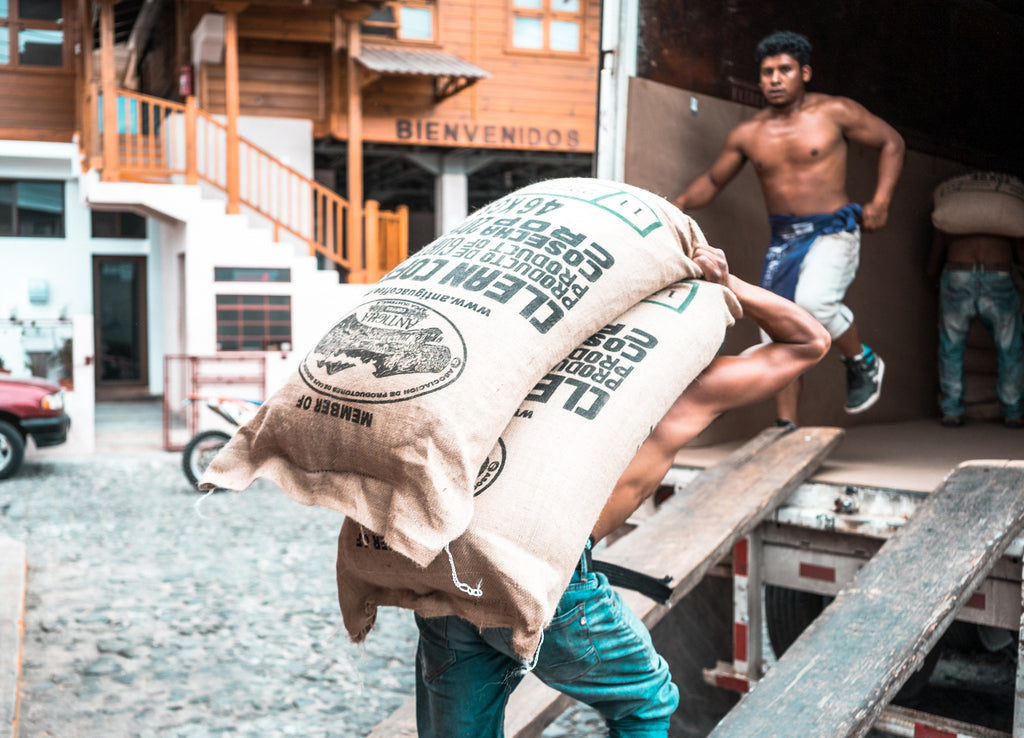 Loading Coffee Containers for Export