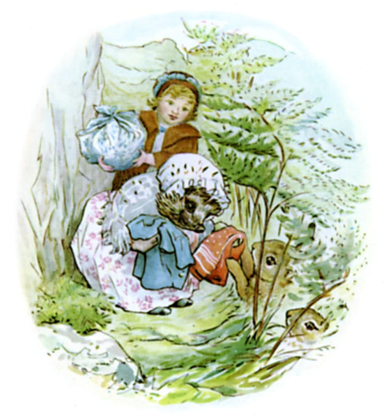 Beatrix Potter Mrs Tiggywinkle illustration