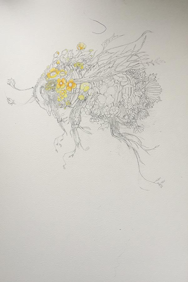 Bumble bee drawing/painting in progress Daniel Mackie