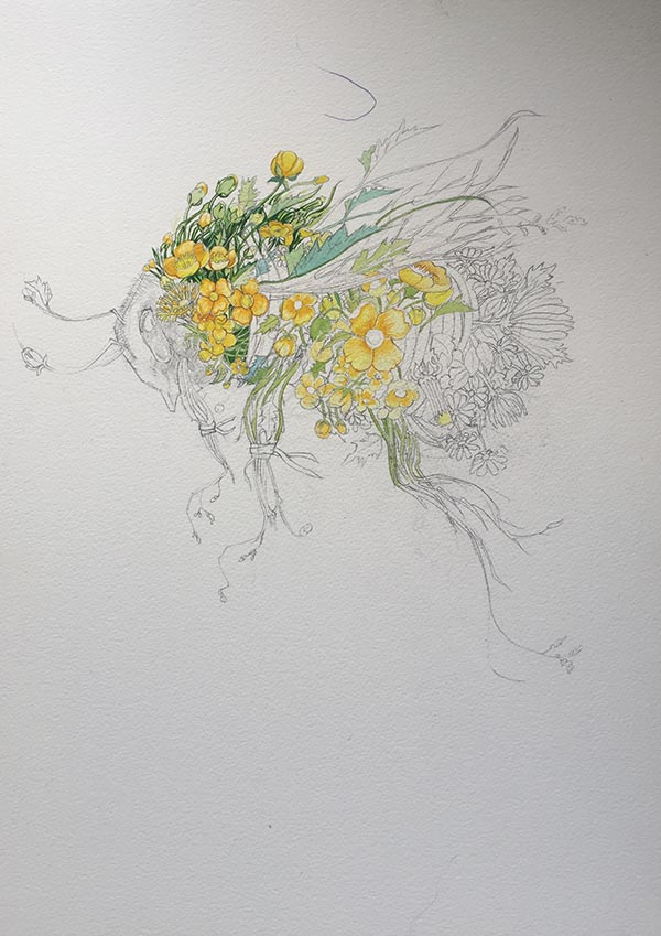 Bumble Bee Drawing/ Painting in progress Daniel Mackie watercolour