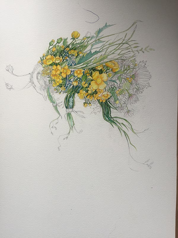 Bumble bee drawing /watercolour painting in progress- Daniel Mackie