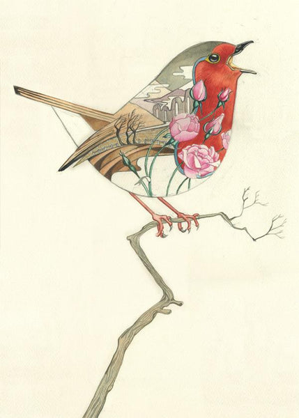 Robin, in a winter landscape- with red breast and pink roses