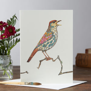 Song Thrush Greetings Card by Daniel Mackie-The DM Collection