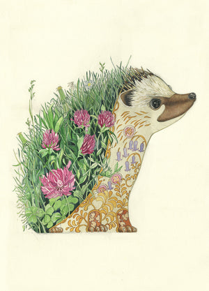 Hedgehog art print at The DM Collection, Artist Daniel Mackie