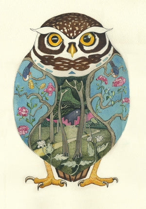 Little Owl  -  Card
